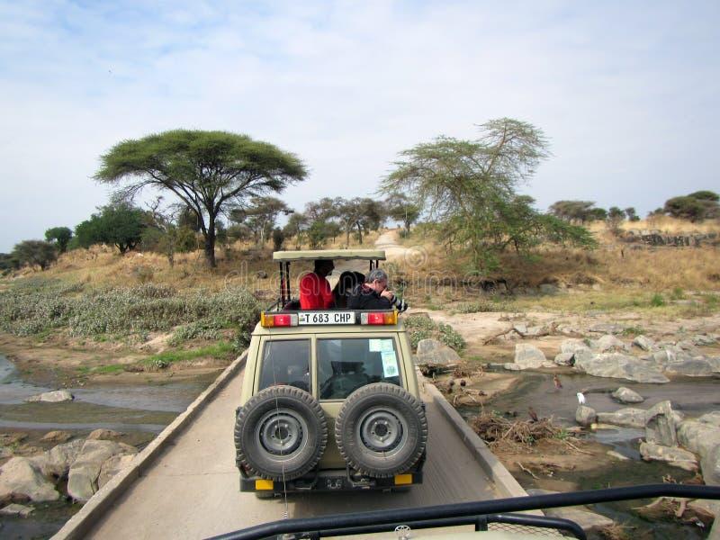 Safari del jeep imagen de archivo