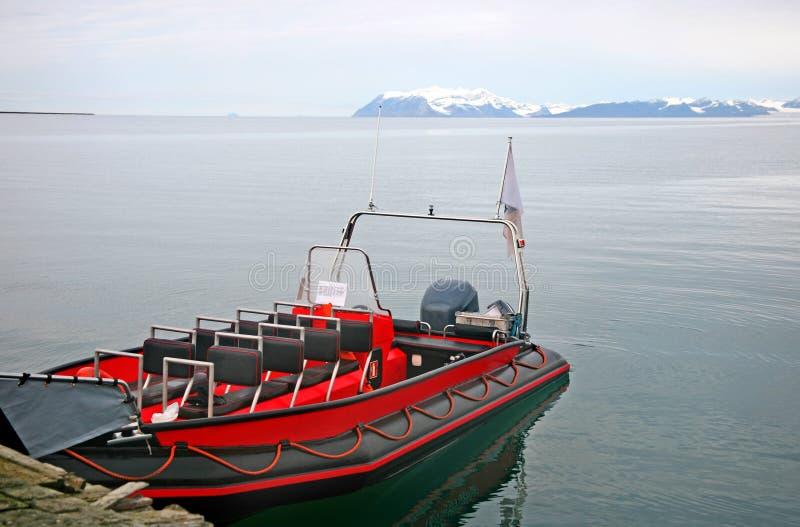 Safari del mare immagini stock