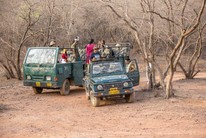 Safari della jeep immagini stock