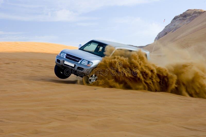 safari desert fotografia stock