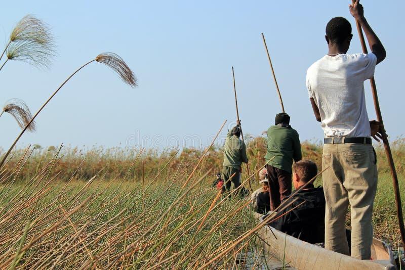 Safari di Mokoro fotografia stock libera da diritti