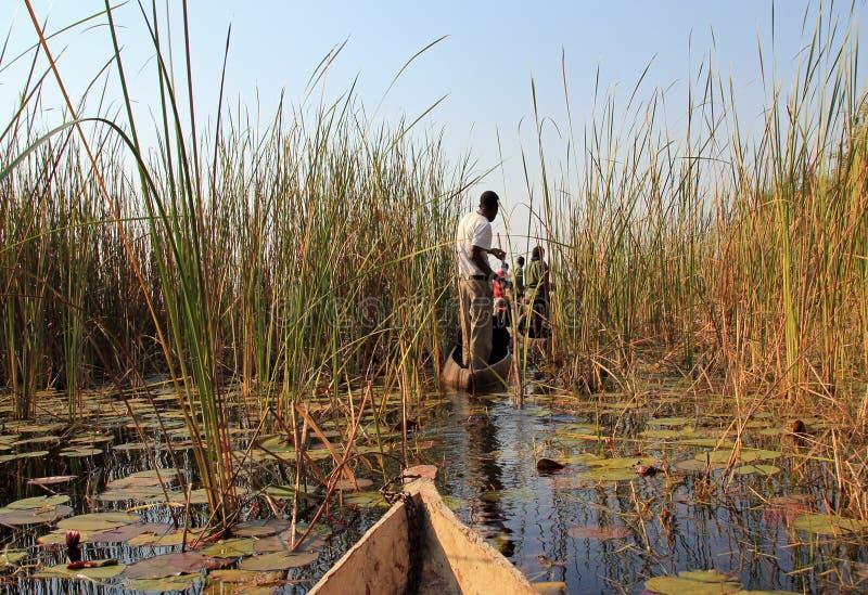 Safari di Mokoro immagini stock libere da diritti