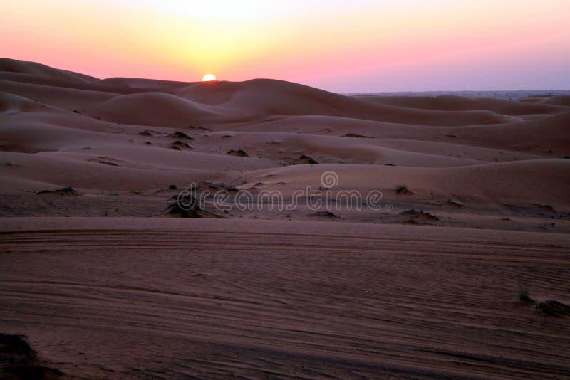 Safari do deserto imagens de stock royalty free