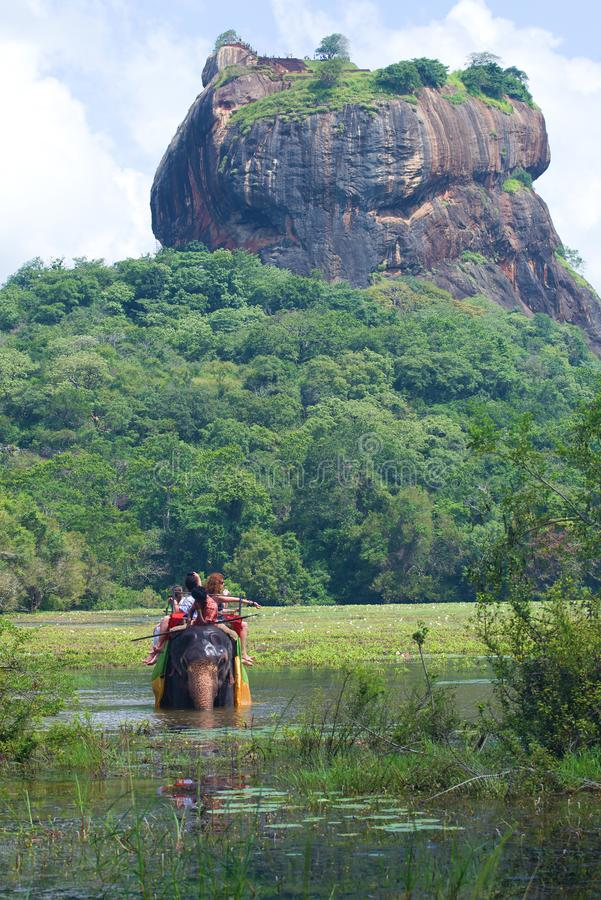 Safari do elefante no pé da montanha de Sigiriya, Sri Lanka fotos de stock royalty free