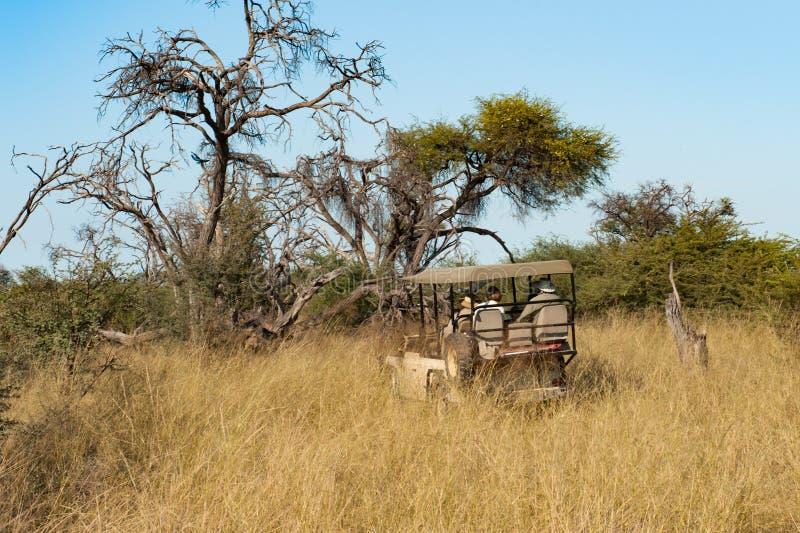 Safari drive in open vehicle out of the way, Okavango Delta, Botswana, Africa stock photography