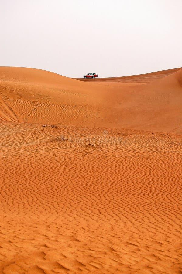 Safari - Dubai fotografie stock libere da diritti