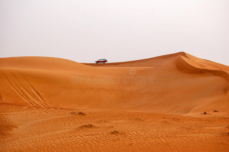 Safari - Dubai immagini stock