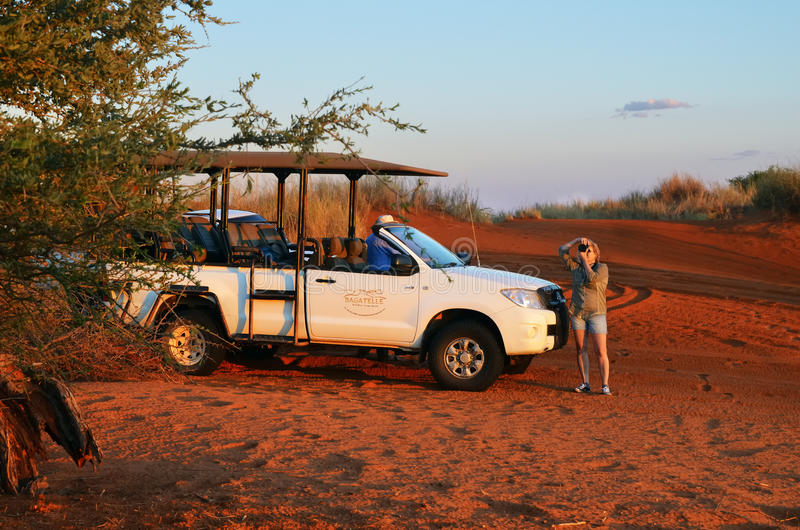 Safari en Namibia, África fotografía de archivo