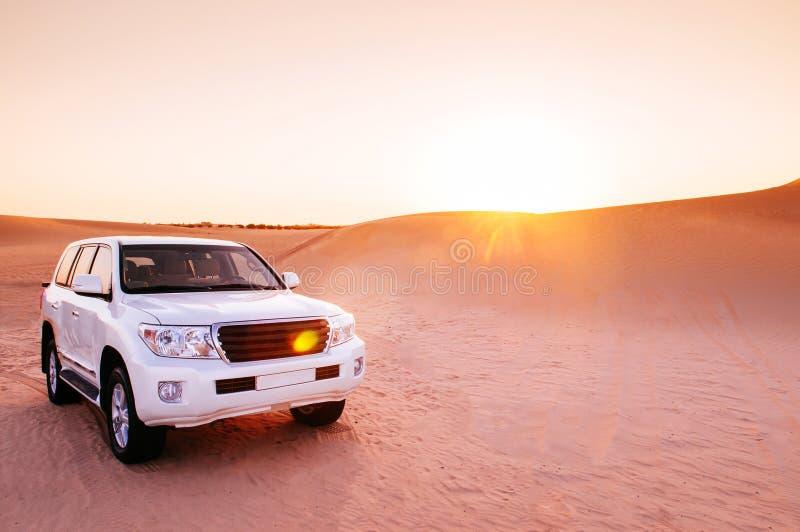 Safari fuori strada di tramonto del deserto nel Dubai - Abu Dhabi fotografia stock