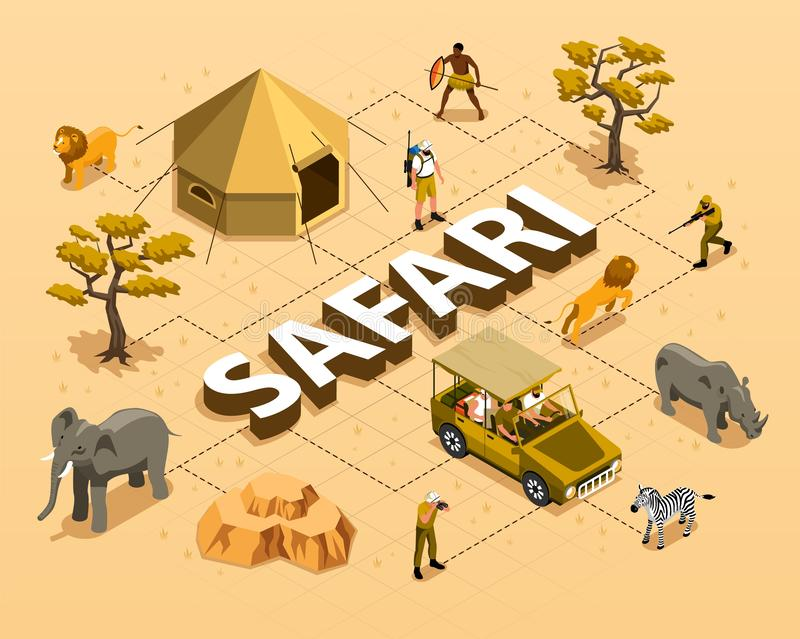 Safari Isometric Flowchart. With wild animals car tent trees and hunters 3d vector illustration royalty free illustration