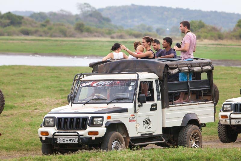 safari Jeep campo a través con los visitantes de la familia Minneriya Sri Lanka fotografía de archivo libre de regalías