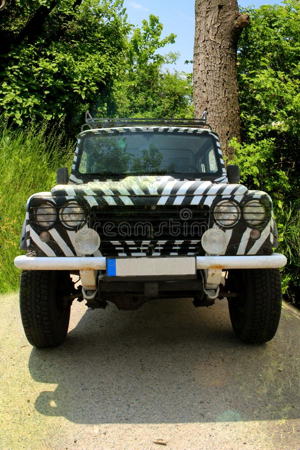 Safari jeep with a zebra pattern drives through a beatiful nature full of trees and bushes of a national park of Europe. A four wheel drive car royalty free stock photos