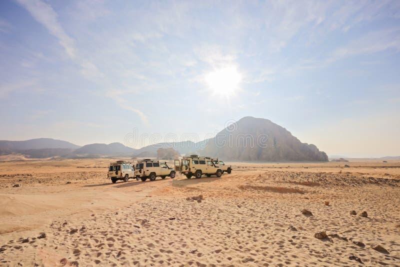Safari Jeeps fotografering för bildbyråer