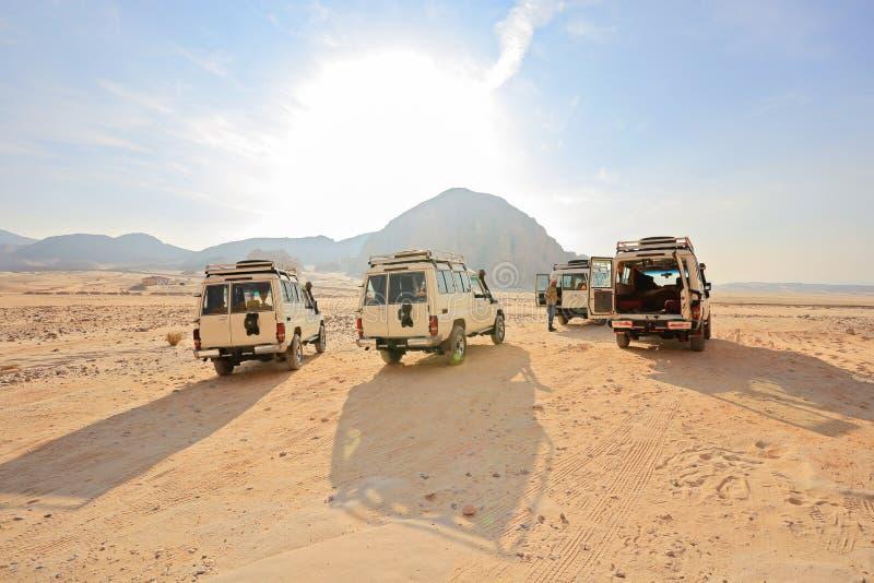 Safari Jeeps arkivbilder