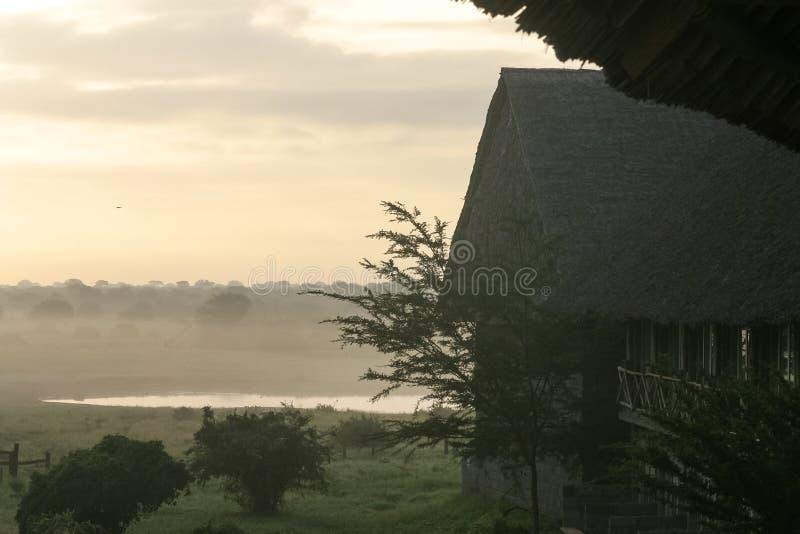 Safari Lodge fotografía de archivo