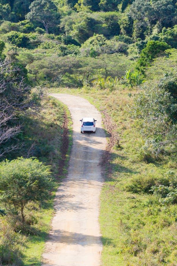 Safari met auto bij de landweg royalty-vrije stock afbeelding