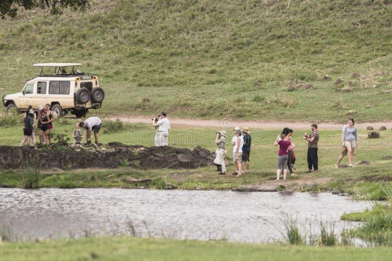 Safari in Nogorongoro Crater royalty free stock photo