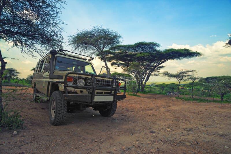 Safari pojazd obraz royalty free