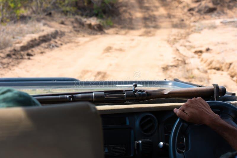 Safari przewdonika jeżdżenie z jego karabinem w krzaku Południowa Afryka obraz stock