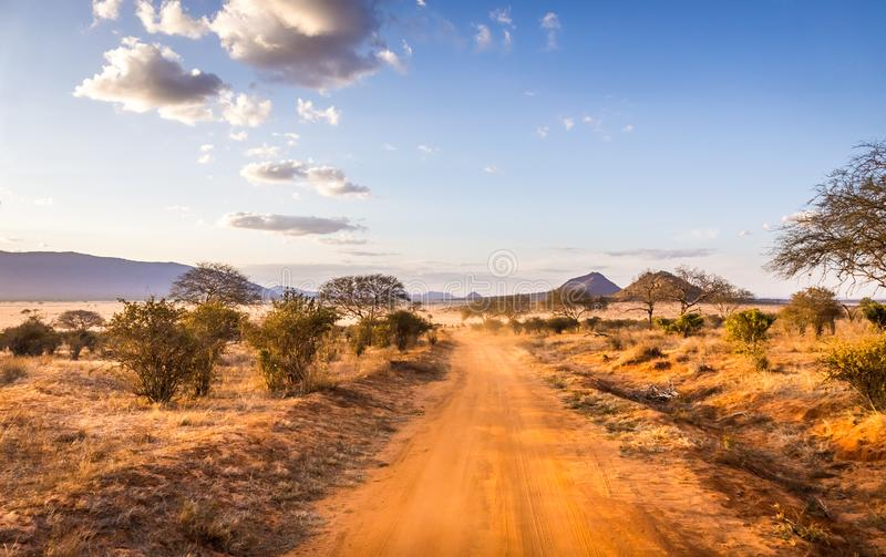 Safari road in Kenya royalty free stock photo