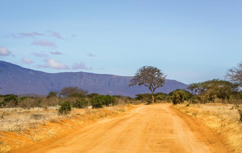 Safari road in Kenya royalty free stock images