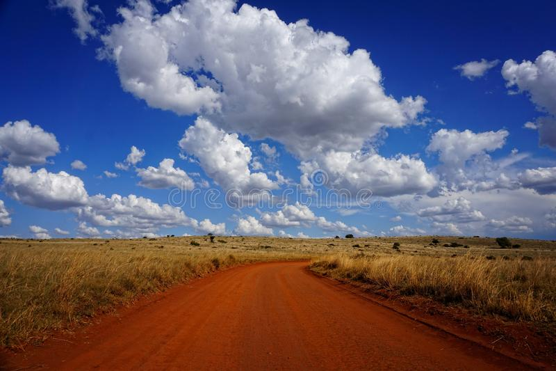 Safari Road nahe Johannesburg Südafrika stockfotografie