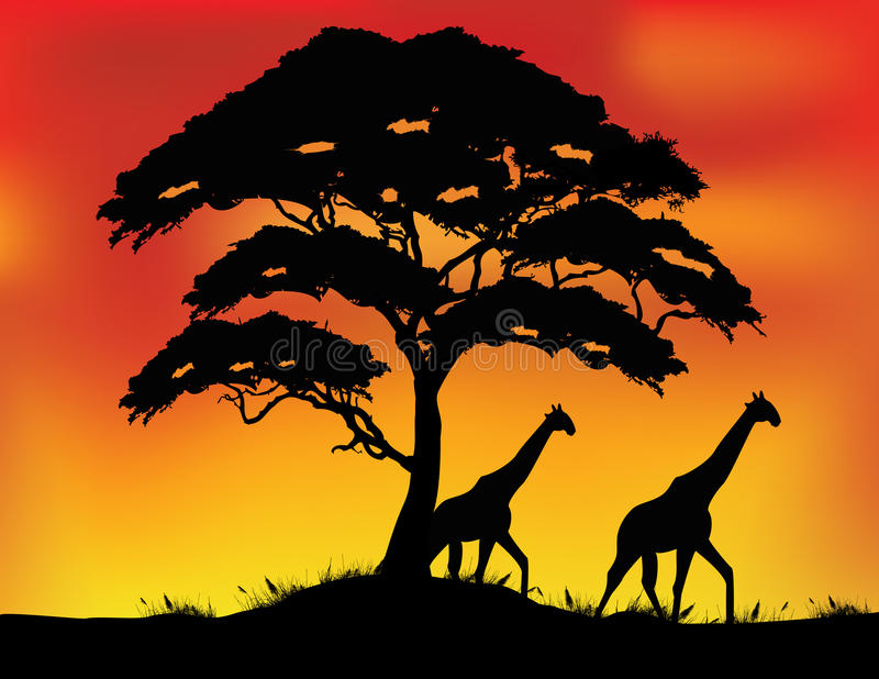 Safari silhouette background vector illustration