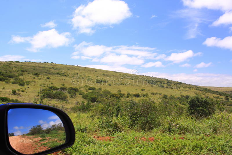 On safari in South Africa stock photography