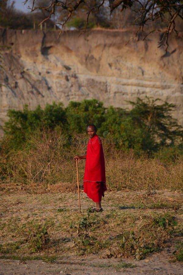 Safari Tanzania de la gente de Maasai foto de archivo libre de regalías