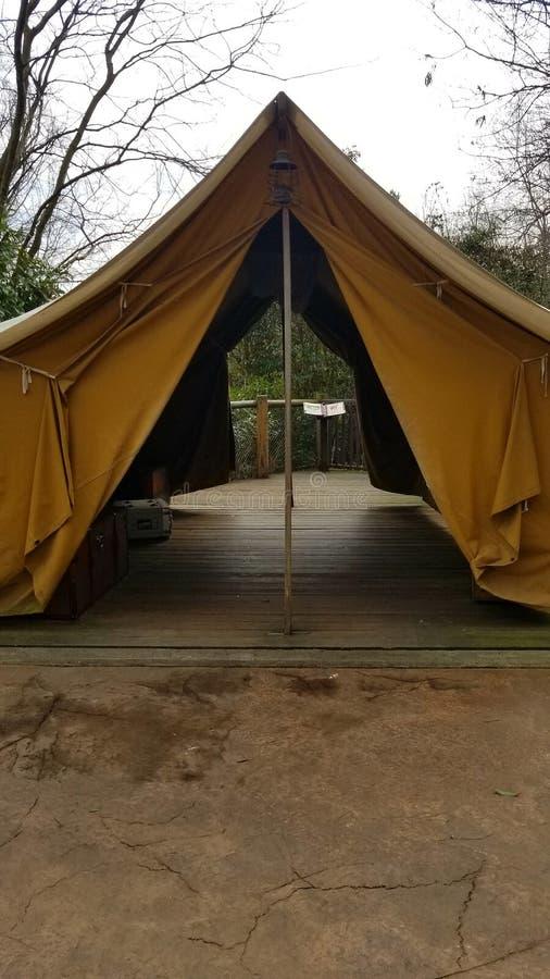 Safari Tent fotografie stock libere da diritti