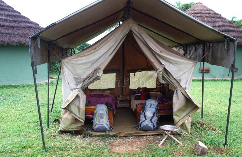 Safari Tent Setup básica fotografia de stock