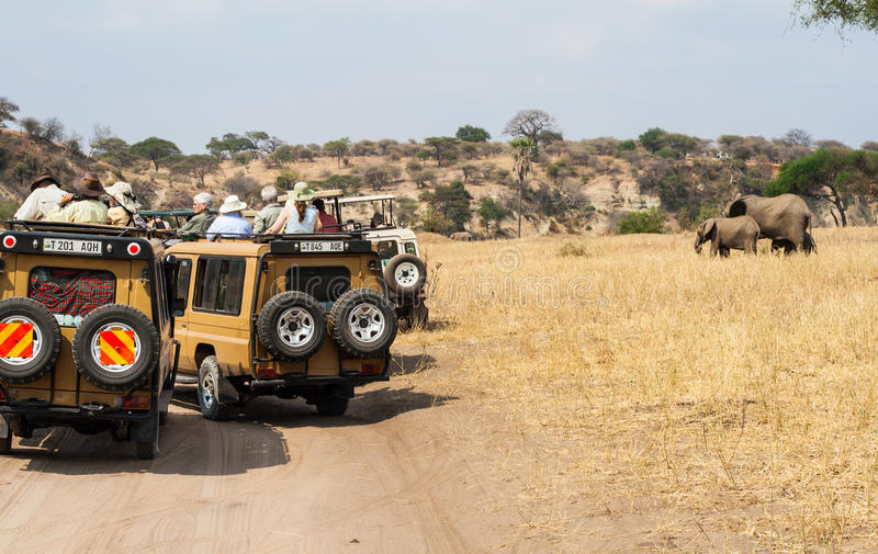 Safari tourists watching elephant from jeep (2) royalty free stock photo
