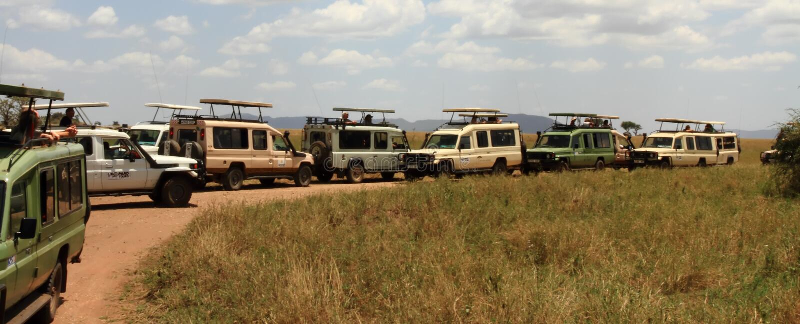Safari Traffic Viewing Spot royalty free stock photos