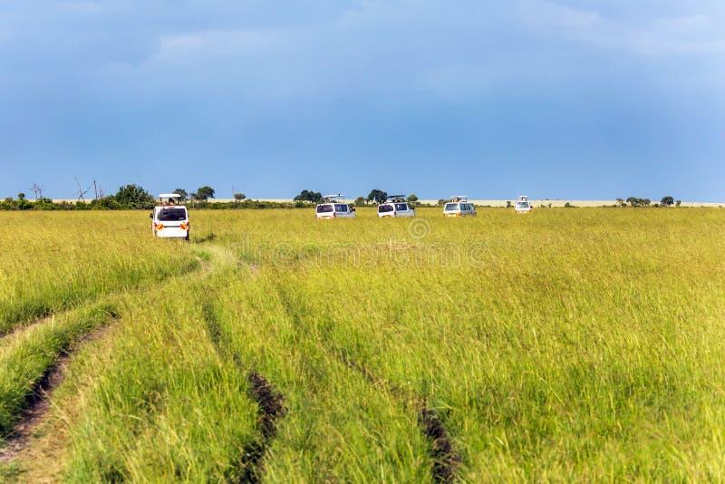 Safari - turnera för att reservera Masai Mara arkivbild