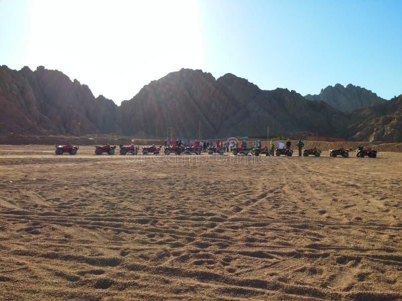 Safari w pustyni obraz stock