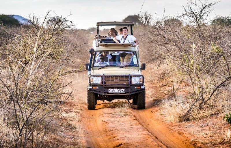 Safariabenteuerreise lizenzfreie stockfotografie
