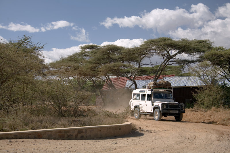 Safarifahrzeug stockfotografie
