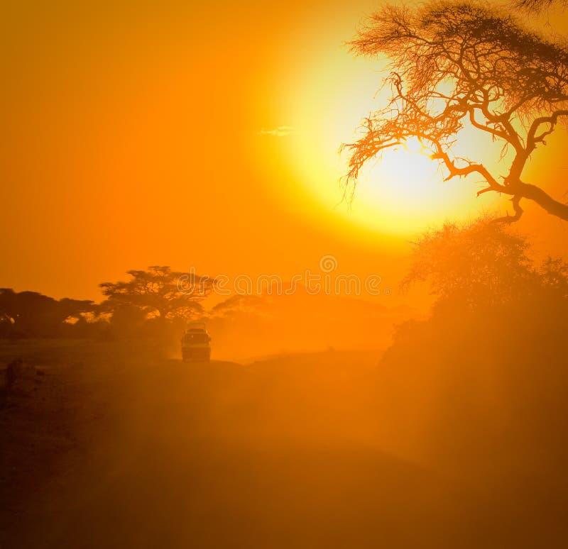Safarijeep som kör till och med savannah arkivfoton