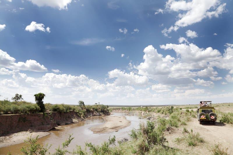 Safarilekdrev längs den Mara floden, Kenya arkivfoton