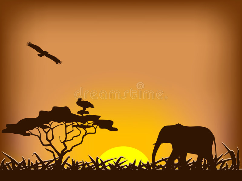 safarisolnedgång stock illustrationer