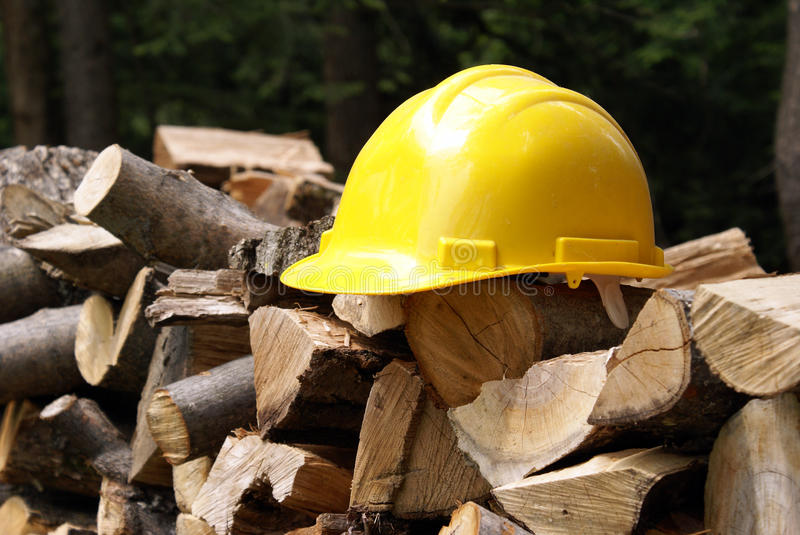 Download Safety First stock image. Image of woods, head, wood - 14567845