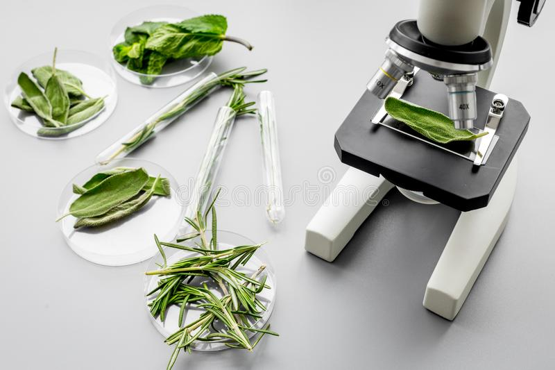 Safety food. Laboratory for food analysis. Herbs, greens under microscope on grey background top view stock image