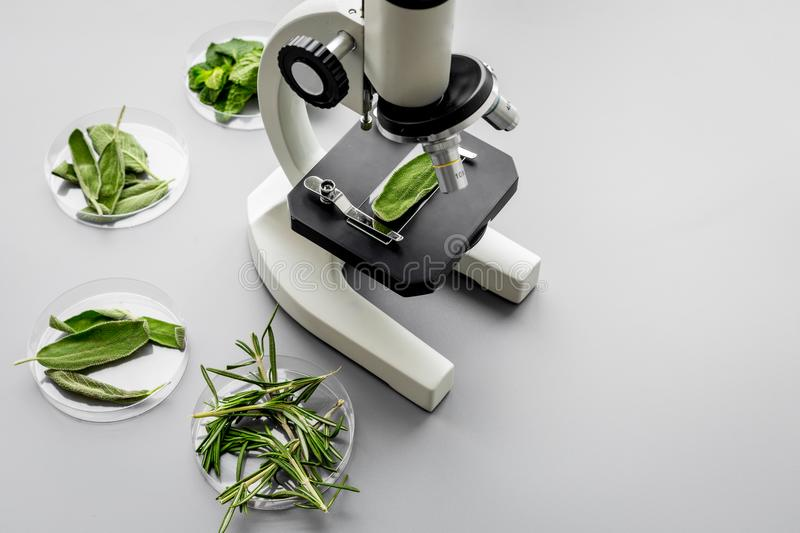Safety food. Laboratory for food analysis. Herbs, greens under microscope on grey background top view copy space stock photo