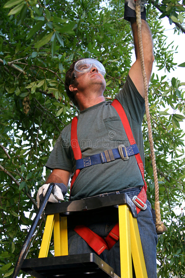 Free Safety On The Job Stock Photo - 146060