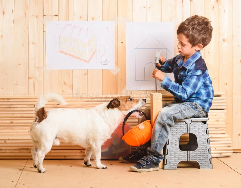 Safety precautions concept with dog carrying hardhat to builder royalty free stock photos