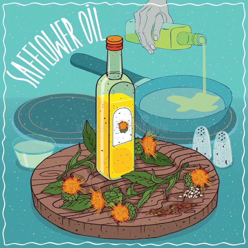 Safflower seed oil used for frying food. Glass bottle of Safflower seed oil and flowers of Carthamus tinctorius plant. Hand pouring oil on frying pan. Natural vector illustration