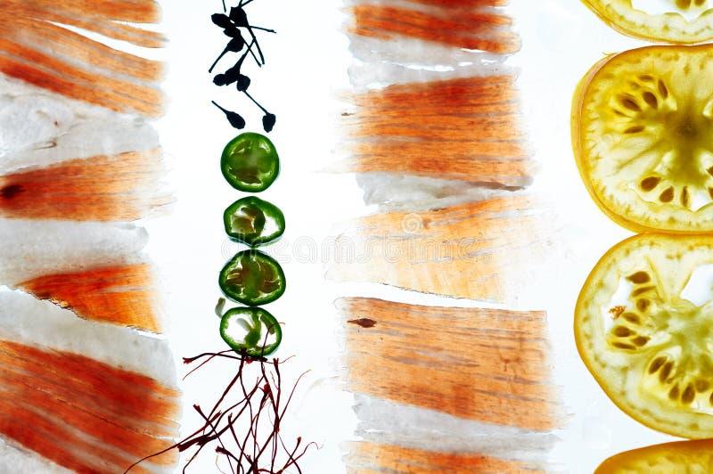 Saffran för peppar för chili för tomat för serano för skinka för iberico för negra för stordiamatpata arkivfoton