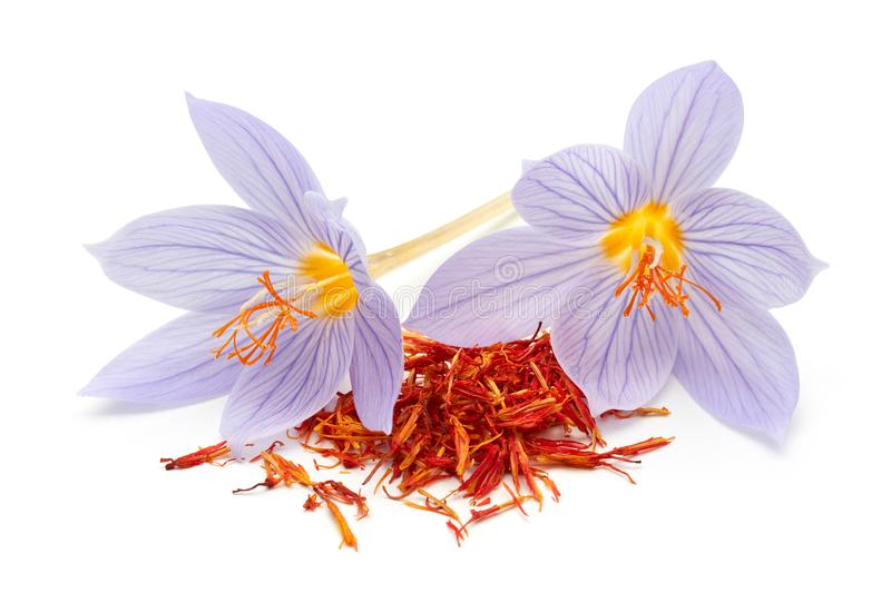 Saffron with crocus flower isolated on white background stock images