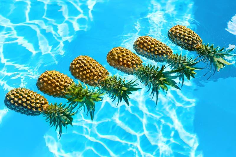 saftig frukt Nya organiska ananors i pöl Sund mat, mutter fotografering för bildbyråer