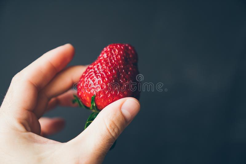 Saftig mogen jordgubbe i en manlig hand på en mörk bakgrund royaltyfri bild